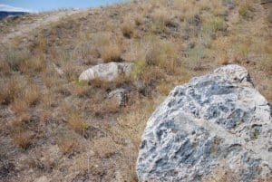 Grasslands and rocks of the Similkameen